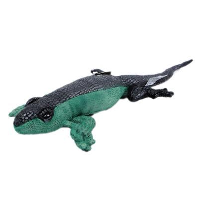 3005번 도마뱀 Lizard/51cm.L