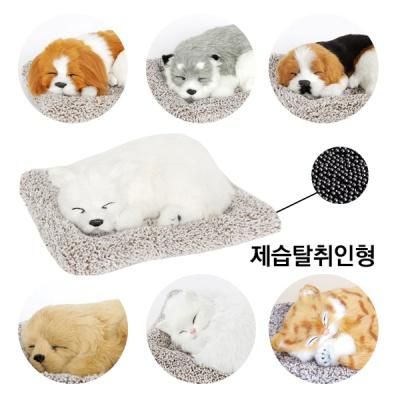 갓샵 강아지 고양이 제습탈취인형 공기정화