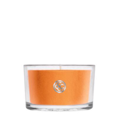 COLONIAL CANDLE 2846글래스 티라이트 캔들 호박코코넛 토르테