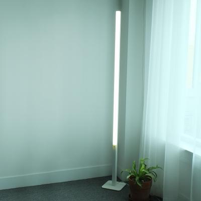 올루미 LED 폴 장스탠드