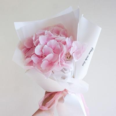 핑크 수국