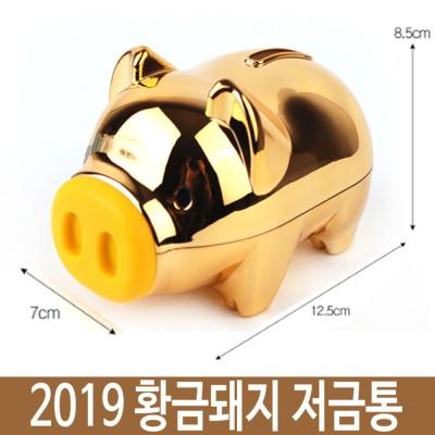 2019 황금 돼지 저금통