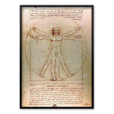 500조각 직소퍼즐▶ 인체 비례도 (BN805-25)
