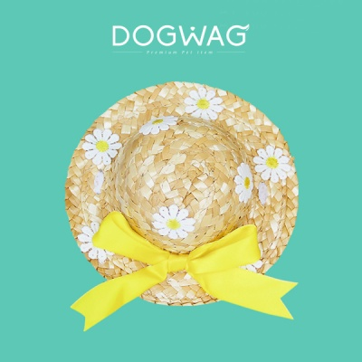 데이지 밀짚모자 고양이 여름 패션 강아지 산책 모자