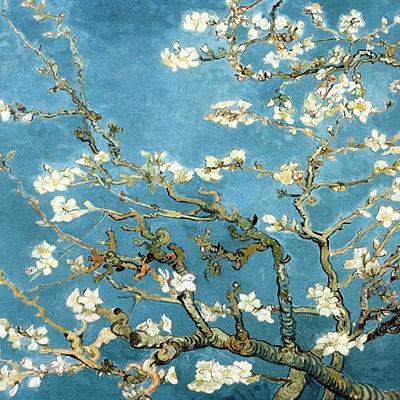 1000조각 직소퍼즐▶ 꽃이 핀 아몬드 나무의 가지들 (OMP1209)