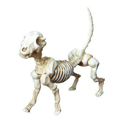 포즈 스켈레톤 - 스켈레톤 강아지(사람포함안됨)