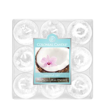 COLONIAL CANDLE 2074 티라이트 9pk 캔들 코코넛 레인