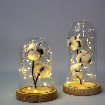 LED 은하수 유리돔