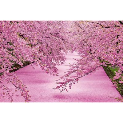 1000피스 직소퍼즐 - 분홍빛으로 물든 히로사키 공원