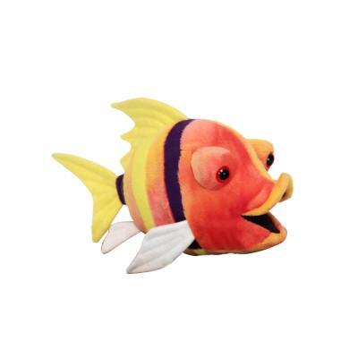 2973번 물고기 Fish/26cm.L