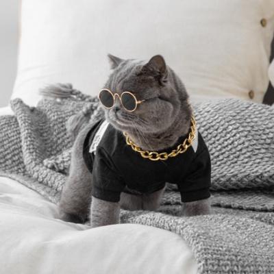 펫데일리 고양이 강아지 선글라스 안경 냥글라스