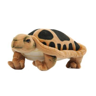 3816번 거북이 Turtle/28cm.L