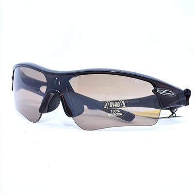 GAZEL 패션 선글라스 로키7207 크리스탈 브라운브라운