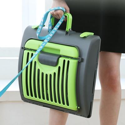튼튼한 접이식 애완용 가방 -그린