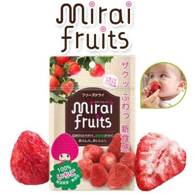 [비타토 국내생산 미래과일] 동결건조과일칩 딸기칩