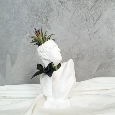 석고상화분 틸란드시아 론레어+모스+리본