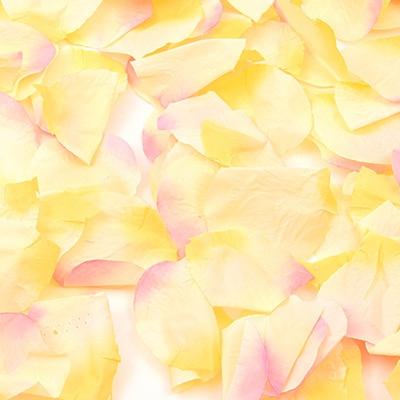 플라워샤워 이벤트꽃잎 (망고)