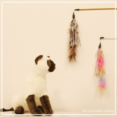 고양이 전용 깃털