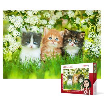 1000피스 직소퍼즐 - 흰 꽃밭의 아기고양이들