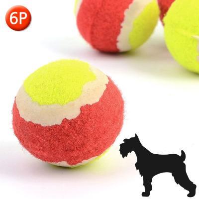 강아지 장난감 공 6p 1세트(색상랜덤)