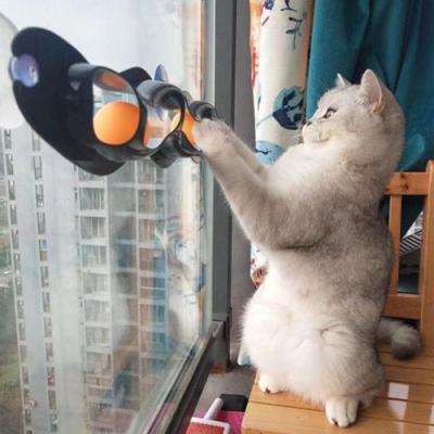 반려고양이 캣 롱트랙 1개