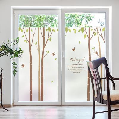 창문 유리창시트지 칼라 안개시트지 새들의자작나무01