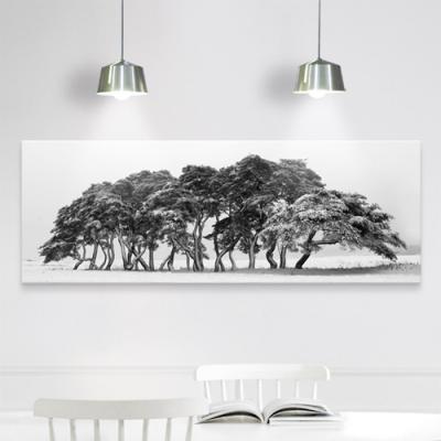 cv683-눈이쌓인흑백나무_대형노프레임