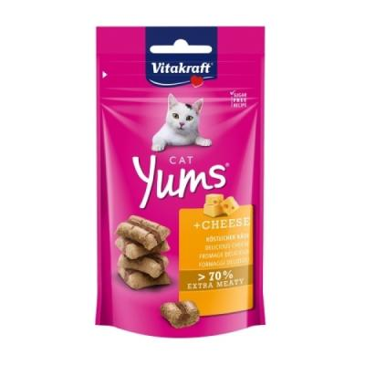 비타크래프트 캣얌 치즈 40g 고양이간식