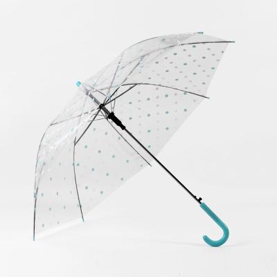 컬러 도트 장우산 / 반투명우산