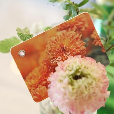 4000블링블링메시지카드(8종 1세트)