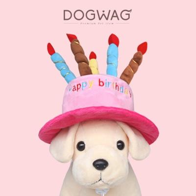 [도그웨그 DOGWAG] 강아지&고양이 생일파티 생일모자