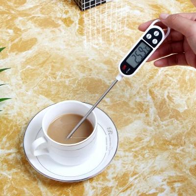 스테인리스 디지털 핀 온도계
