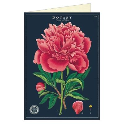 카발리니 그리팅카드 - Botany