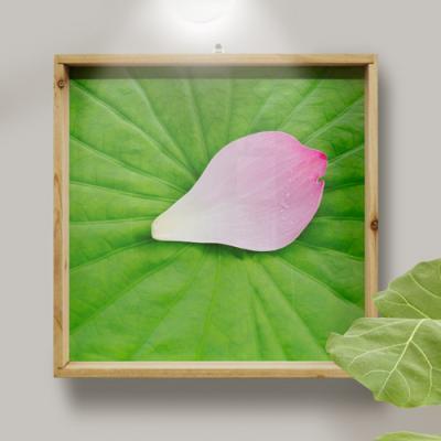tg716-우드프레임액자_연잎위의꽃잎(중형)