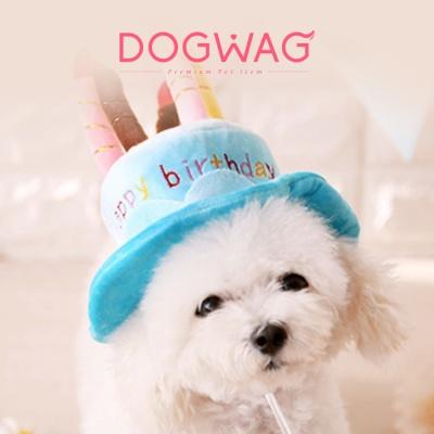 케이크 모자 강아지 고양이 생일 파티 이벤트 용품