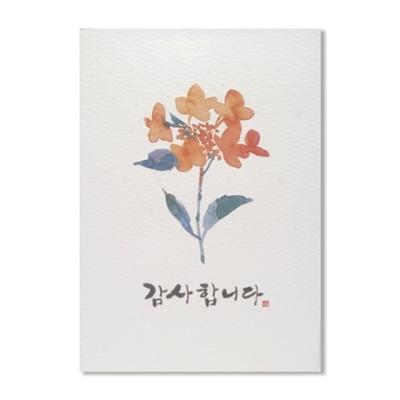 홀마크 감사 카드(꽃3)-KED2197