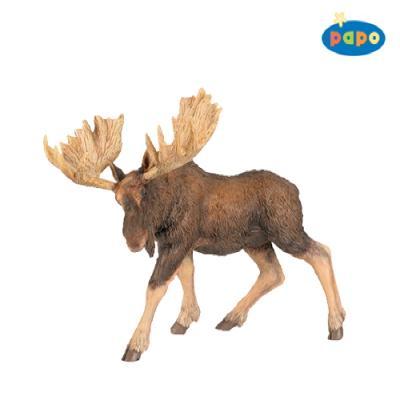 무스 (북미산 큰사슴)