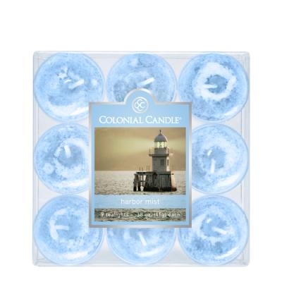 COLONIAL CANDLE 920 티라이트 9pk 캔들 항구의 안개