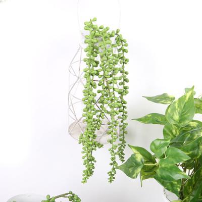 고속터미널꽃시장 녹영 콩란 조화 64cm 행잉플랜트