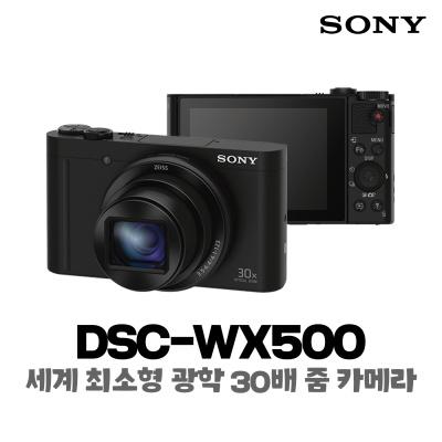 소니 최소형 광학30배줌 카메라 DSC-WX500 + 16GB 메모리 패키지