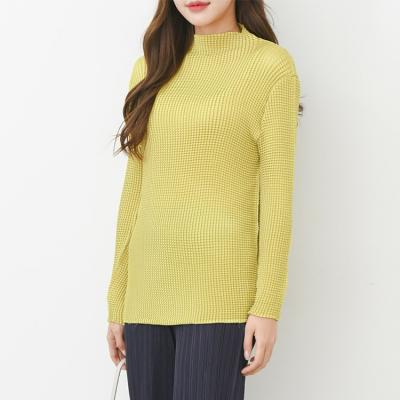 Pleats Wa Mini Turtle Top - 긴팔