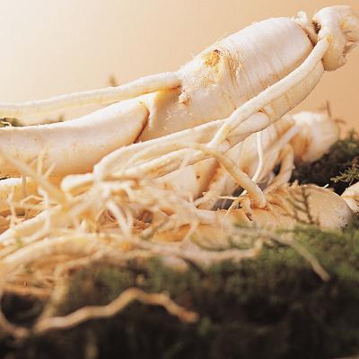 금산 울몸애 세척인삼 난발 파삼(10~12뿌리내)600g