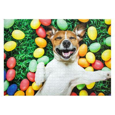 아이엠미니 직소퍼즐 1000피스_행복한 강아지