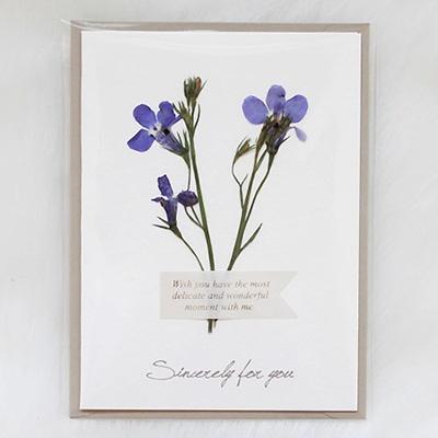[향기카드] 압화미니카드 - 로베리아 [블루]