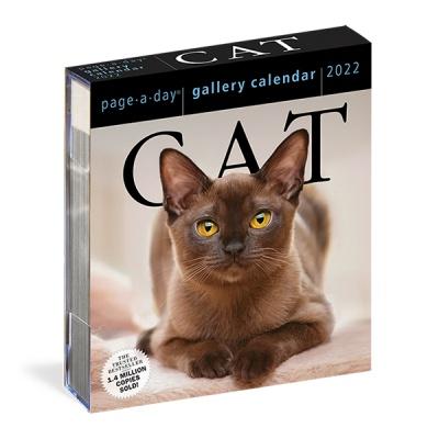 2022 갤러리캘린더 Cat