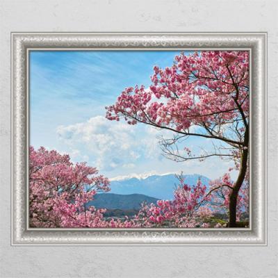 il415-벚꽃이만개한산풍경_칭문그림액자