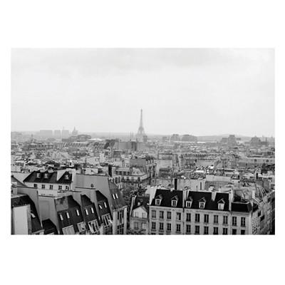 THE POSTER in PARIS - Vintage