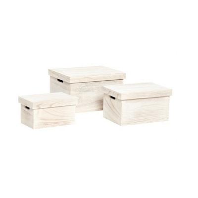 [Hubsch]Empress tree box,light, set of 3 167002 우드박스