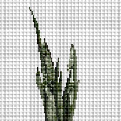 산세베리아 (캔버스형) 보석십자수 25x25