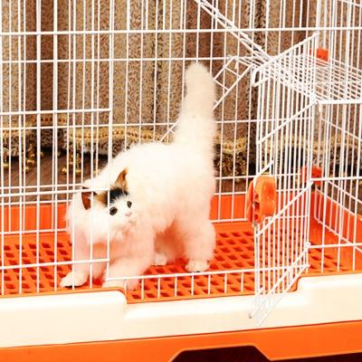 고양이 빌라 케이지 하우스